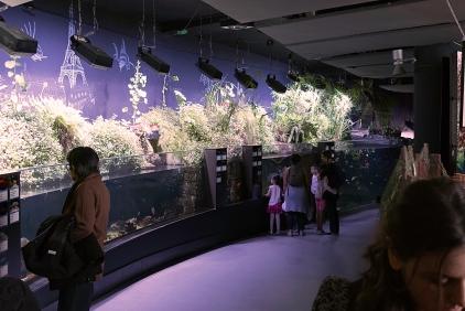 Pascal Bonnet - GEM de Rungis sortie Aquarium du Trocadéro le 17-04-2018